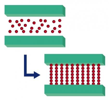 180502フェローテック2: 印加磁場による粒子の配列制御