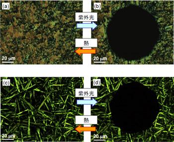 2種類の有機化合物(上段、下段)の相転移の様子。液体部分は黒く観察される。
