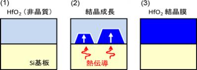 図2:開発した高誘電率結晶膜(HfO2)の合成方法。(1) シリコン基板上に非晶質状態のHfO2膜を堆積、(2) 基板からの熱伝導を利用して界面からの結晶成長を促進、(3) 隙間の無い、ち密な結晶膜が完成。