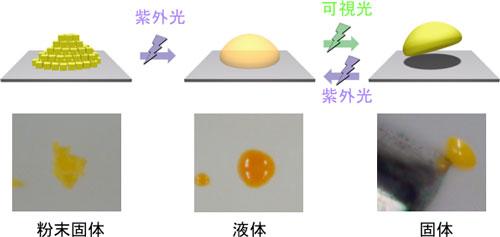 紫外線を照射すると固体粉末が融けて液滴となり、可視光を照射すると再度固まる